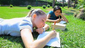 Three students in park with books reading stock footage