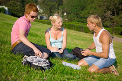 Three students talking in the park. On the grass royalty free stock photo