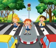 Three students at the zebra crossing vector illustration