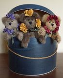Three stuffed bears in a hat box Royalty Free Stock Images