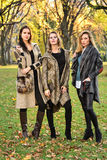 Three stunning young Caucasian women wearing elegant clothes posing in the autumn park. Royalty Free Stock Photos