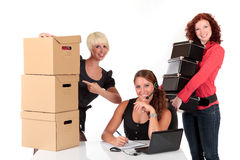 Three successful businesswomen Stock Photos