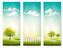 Three summer background banners. Stock Image