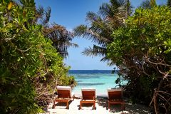 Three sun loungers framed by tropical plants on a beach in the Maldives. Three sun lounger chairs sit on a small section of beach in the Maldives. The seats are royalty free stock photos