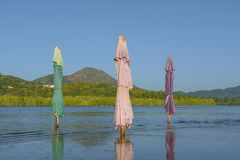 The three sun umbrellas are closed inside the Juluapan lagoon in Manzanillo Colima. The lagoon of Juluapan in Manzanillo Colima is an ecosystem rich in flora royalty free stock images