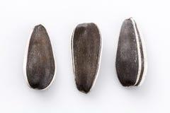 Three sunflower seeds on white Royalty Free Stock Photos