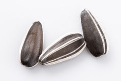 Three sunflower seeds on white Royalty Free Stock Image