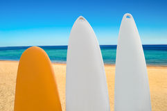 Three surfboards Royalty Free Stock Images