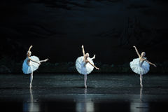 Three swan Fairy-ballet Swan Lake Stock Photo