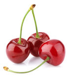 Three sweet cherries Royalty Free Stock Photo