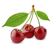 Three sweet cherries with leaves Stock Photos