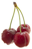 Three sweet cherry cutout Stock Images