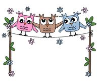 Three sweet owls Royalty Free Stock Photography