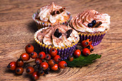Three sweet cupcakes with butter cream, cinnamon and rowan berry Royalty Free Stock Images