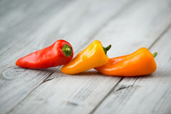 Three sweet mini peppers red, yellow and orange on a wooden background Stock Photos