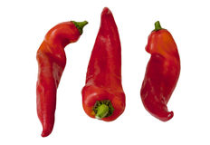 Three sweet  pepper Stock Images