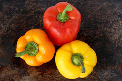 Three sweet peppers Stock Image