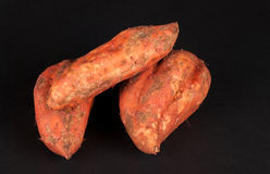 Three sweet potatoes Stock Photography