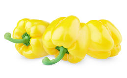 Three sweet yellow peppers Stock Image