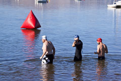 Three Swimmers Testing Water Before Swimming Race Royalty Free Stock Photos