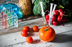 Three syringes in tomato. Genetically modified food concept. Royalty Free Stock Images
