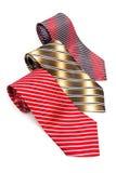 Three tabby necktie Stock Image