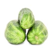 Three tails of cucumber. Stock Photography