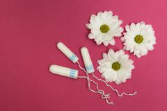 Three tampons on a pink background with white flowers stock images