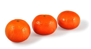 Three Tangerines. Three fresh tangerines isolated in background white with soft shadow Royalty Free Stock Image