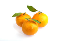 Three tangerines. Closeup studio photo of  three tangerines  nice and juicy with leaves isolated on white background Royalty Free Stock Image