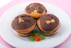Three tasty muffins on a white plate Stock Photos