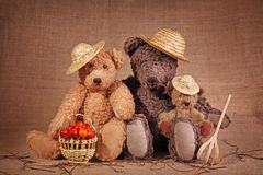 Three teddy bear stock image