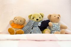 Three teddy bears dolls. On a pink kid bed Stock Photography