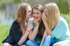 Three teen girl friends sharing secret Stock Photo