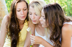 Three teenage girl friends blow away dandelion on summer day outdoors Royalty Free Stock Image