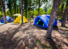Three tents in the campsite area in the beautiful forest.  royalty free stock photography