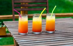 Three tequila sunrise cocktails Royalty Free Stock Photo
