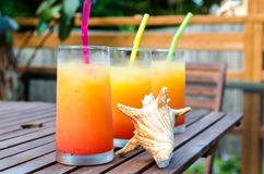 Three tequila sunrise cocktails Royalty Free Stock Images