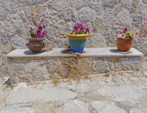 Three terracotta flowerpots Royalty Free Stock Photos