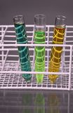 Three test-tubes with fluids in a stand Stock Photos