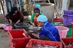 Three Thai women in hijab clean and wash fish at village in Pattani Thailand. Pattani, Thailand - May 9, 2017: Three Thai Muslim women process and clean fresh royalty free stock photo