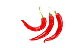 Three thin elongated hot red chili pepper isolated Stock Image