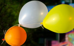 Three tied colorful balloon. Party time, three tied colorful balloon Royalty Free Stock Image