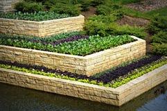 Brick Water Garden Stock Image