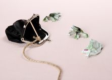 Three toads from one hundred euro banknotes catch with purse. Soft focus Stock Photos