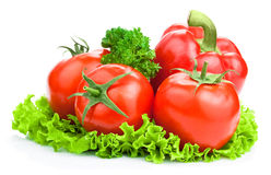 Three tomato, paprica, parsley and lettuce Stock Photography