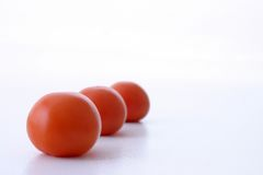 Three tomatoes Stock Image