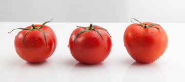 Three Tomatoes Royalty Free Stock Photos