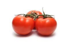 Three tomatoes. On white background Stock Photos