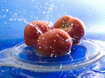Three tomatoes Stock Photo